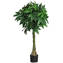 Nearly Natural Braided Money Tree, 51-Inch
