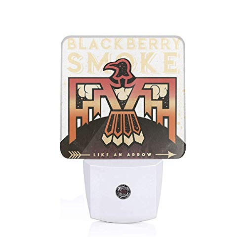 Alberto J Campbell BlackBerry Smoke Plug-in LED Night Light with Dusk-to-Dawn Sensor for Bedroom, Bathroom, Kitchen, Hallway, Stairs