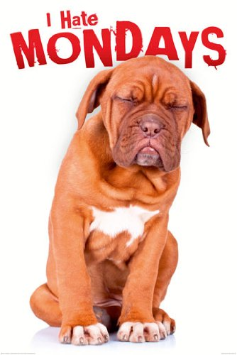 I Hate Mondays Dog Puppy Funny Cute Office Space College Rare Poster Print