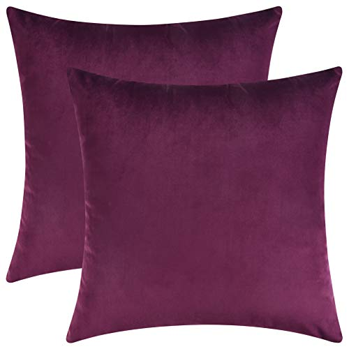 Mixhug Decorative Throw Pillow Covers, Velvet Cushion Covers, Solid Throw Pillow Cases for Couch and Bed Pillows, Plum, 20 x 20 Inches, Set of -