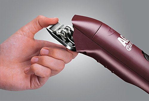 Andis 2-Speed Detachable Blade Equine & Livestock Professional Grooming, Burgundy 22330, AGC2 by Andis (Image #3)