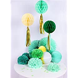 Greenery Tissue Paper Fans Pom Poms Flowers Kit Spring Event Birthday Wedding Party Hanging Decoration Easy Joy