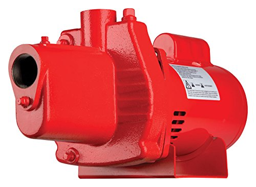 Red Lion RJS-100-PREM 602208 Premium Cast Iron Shallow Jet Pump for Wells up to 25 ft, 9.1 x 17.8 x 9.1 inches, red