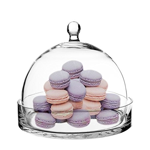 Dome Cover Display (CYS GCL108 Cloche Bell Glass Dome with Tray, 7.5