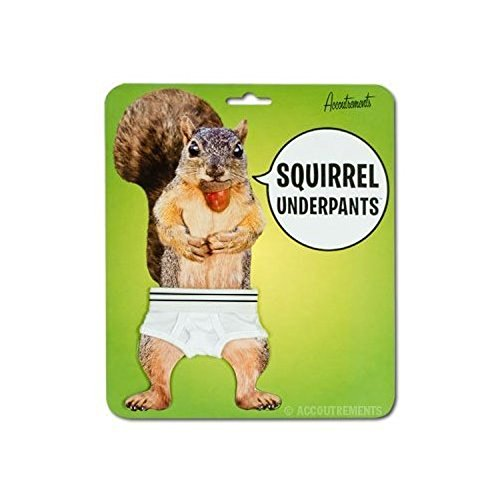 Accoutrements 11884 Squirrel Underpants