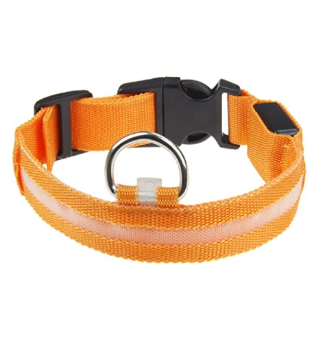 Price comparison product image BSJFU020 1PC Safety Pet LED Collar For Lighted Up Nylon Solid LED Dog Collar Glow Necklace (S, Orange)
