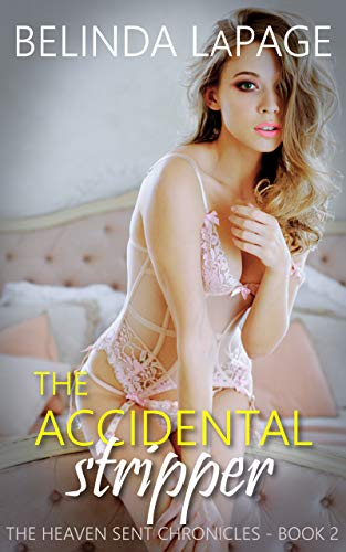 Accidental Stripper Hotwife Fantasy Chronicles ebook product image