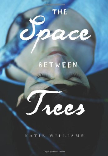 space between the trees - 2