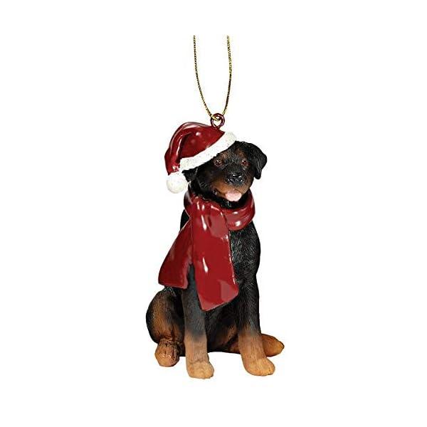 Design Toscano Christmas Xmas Rottweiler Holiday Dog Ornaments, Full Color 1