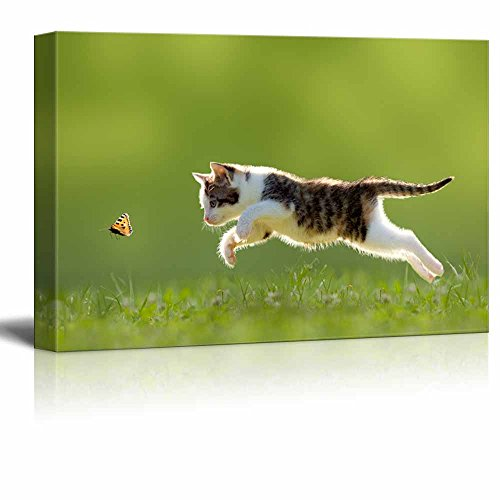 wall26 - Canvas Wall Art - A Kitty Chasing a Butterfly - Giclee Print Gallery Wrap Modern Home Decor Ready to Hang - 16