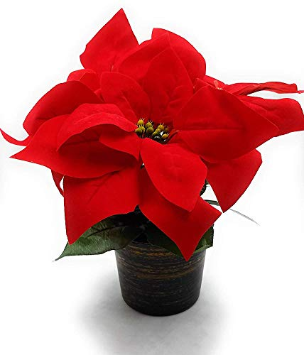 MARJON Flowers9 in Poinsettia Plant Pot Artificial Christmas Silk Flowers Tabletop Decor (Red)