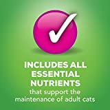 Purina Friskies Pate Wet Cat Food Variety