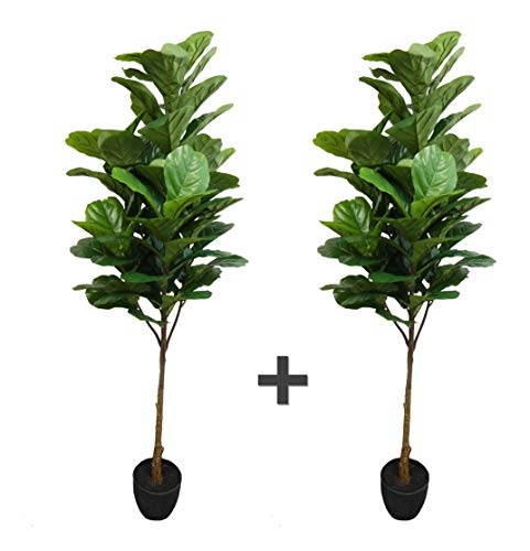 AMERIQUE Pack of Two (2) 6 Feet Gorgeous & Dense 6' Fiddle Leaf Fig Tree Artificial Silk Plant with UV Protection, with Nursery Plastic Pot, - Silk Fig Trees