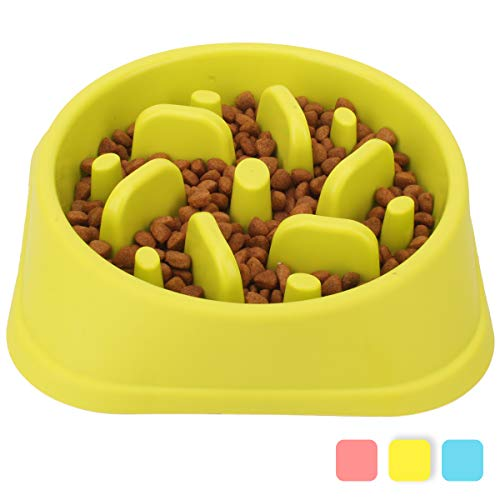 Noyal Dog Slow Feeder Bowl - Non Slip Puzzle Bowl - Anti-Gulping Pet Slower Food Feeding Dishes - Interactive Bloat Stop Dog Bowls - Durable Preventing Choking Healthy Design Bowl Dogs ... (Green)