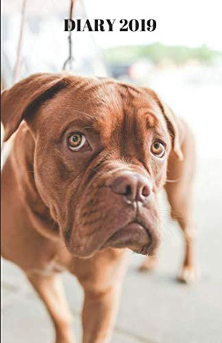 - Diary 2019 - Boxer: Daily Diary for the Year with Notes - Pure Breed Dogs (Dogs Diary 2019)