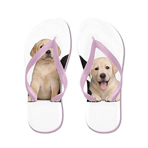 CafePress Labrador Puppies - Flip Flops, Funny Thong Sandals, Beach Sandals Pink