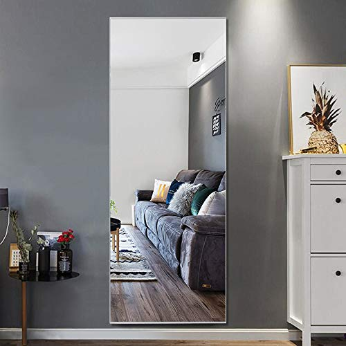 Trvone Full Length Mirror Floor Mirror, Large Rectangle Bedroom Mirror Dressing Mirror Wall-Mounted Mirror, Standing Hanging or Leaning Against Wall, 65 x22 Silver