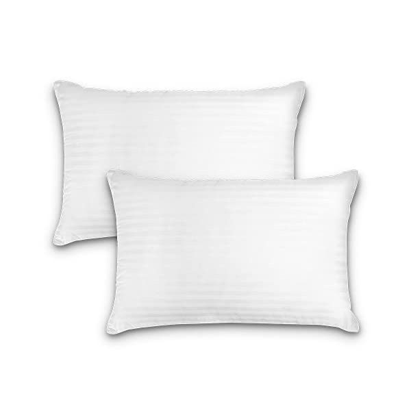DreamNorth Premium Gel Pillow Loft (Pack of 2) Luxury Plush Gel Bed Pillow for Home + Hotel Collection [Good for Side and Back Sleeper] Cotton Cover Dust Mite Resistant & Hypoallergenic