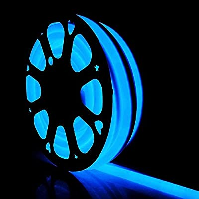 DELight 50 Feet 110 Volts Blue Flexible LED Neon Rope Light 1200 Bulbs Waterproof w/ 50,000 Hours Lifespan for Decorative Lighting Home Outdoor Garden Commercial