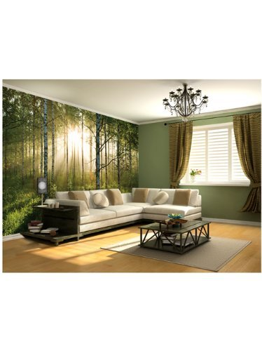 1wall stunning green forest green trees and sunrise wallpaper wall1wall stunning green forest green trees and sunrise wallpaper wall mural amazon co uk kitchen \u0026 home