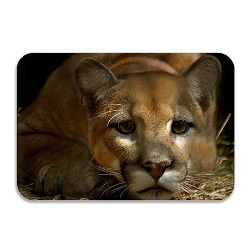 - Soft Non-Slip Cougar Bath Mat Coral Fleece Area Rug Door Mat Entrance Rug Floor Mats