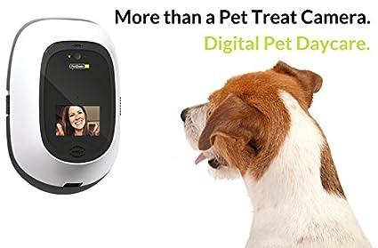 PetChatz HD - Cámara de vídeo para mascotas de gran calidad con DogTv, grabación de vídeo inteligente, aromaterapia calmante y detección de movimiento y ...