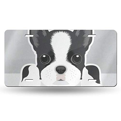 DERTYV License Plate Frame Custom Boston Terrier Puppy Funny Pets Animals Metal Signs Car Cover Set Fantastic for Car Decoration