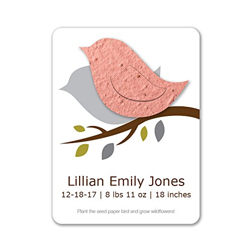 Bloomin Plantable Baby Bird Birth Announcement Favor with Seed Paper - Terra Cotta {25 Card Set}