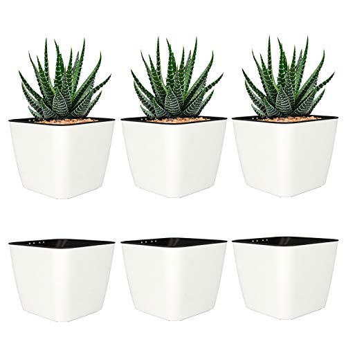 T4U 4 Inch Self Watering Plastic Planter with Liner Pack of 6 - Matte White, Modern Decorative Small Planter Pot for House Plants, Aloe, Herbs, African Violets, Succulents and More (Plastic Plant Pots Decorative)