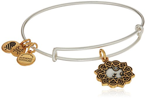 Alex Ani Women's Capricorn...