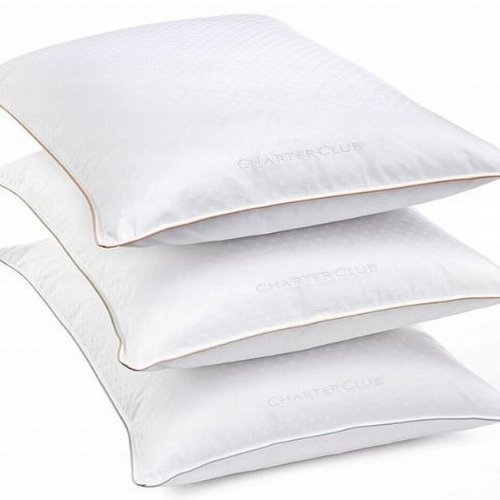 - Charter Club Vail Collection Down Standard/Queen Pillow Soft