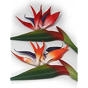 HUAHUA Artificial Flowers, Fashion Bouquets,European Bird of Paradise Plastic Plants Artificial Flowers, Yellow