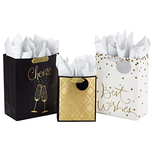 Hallmark All Occasion Gift Bags Assortment with Tissue Paper (Pack of 3 Large and Medium Gift Bags for Anniversaries, Weddings, Birthdays, Holidays, and More)