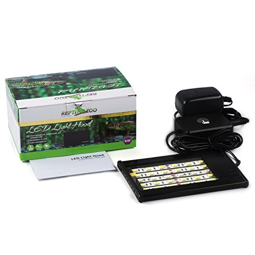 Led Lighting Reptiles in US - 1