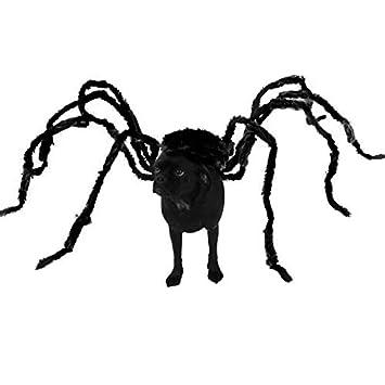 Taimei Lustiges Halloween Kostum Fur Hunde Und Katzen Spinnen