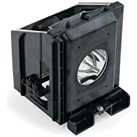BP96-01073A / BP96-01394A - Lamp With Housing For Samsung HLR4266W