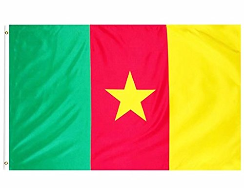 3x5 ft Printed Polyester Fly CAMEROONIAN National Flag Banner with Brass Grommets ()