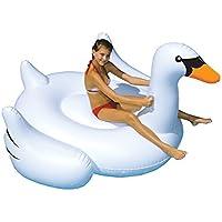 International Leisure Giant Swan