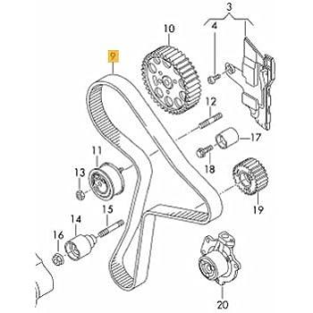 amazon timing belt kit infiniti qx4 1997 1998 1999 2000 2003 Infiniti QX4 Interior timing belt kit cvca