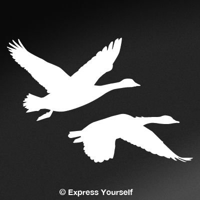 Amazon 2 Geese Flying White