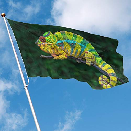 - YUANSHAN Home Garden Flag Colorful Chameleon Polyester Flag Indoor/Outdoor Wall Banners Decorative Flag 3' X 5'