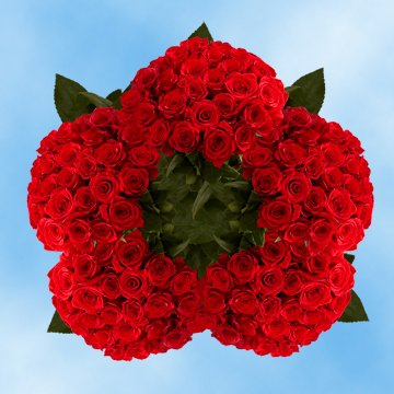 GlobalRose 250 Fresh Cut Dark Red Roses - Black Magic Rose - Fresh Flowers Wholesale Express Delivery