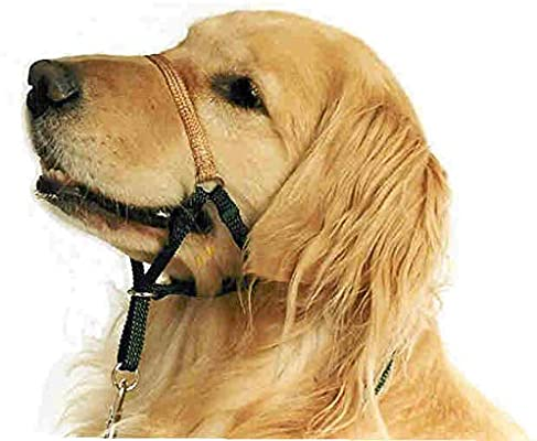 comfort Trainer Head Halter: Amazon.es: Productos para mascotas