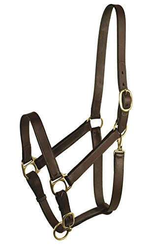 DPD Leather Halter - Weanling