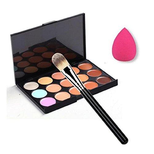 RenZhenDian 15 Farbe Concealer Palette + Make-up Pinsel + Sponge Puff Makeup Contour Palette