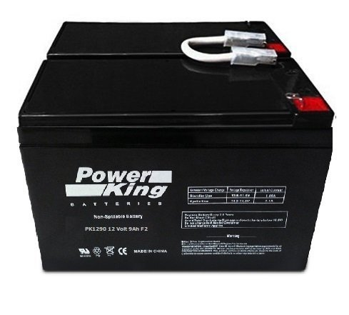 UPS Battery for APC BackUPS RS 1300 LCD 12V, 9.0Amp Lead Acid Battery (Bx1500lcd Replacement Battery)