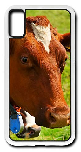 iPhone Xs Case Guernsey Dairy Cow Milk Lactose Farm for sale  Delivered anywhere in Canada