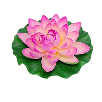 Amazon.com: eDealMax Jardin acuario de la charca de Lotus flotante ...