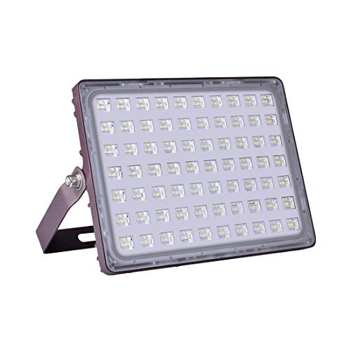 Viugreum LED Flood Light, 100W(500W Halogen Equiv), 10000LM 3000K Warm White, IP66 Waterproof Outdoor Work Lights with Special Glittery Backshell, Security Floodlights for Garage, Garden, Patio