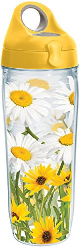 Tervis 1231168 White Daisies Tumbler with Wrap and Yellow Lid 24oz Water Bottle, Clear ()